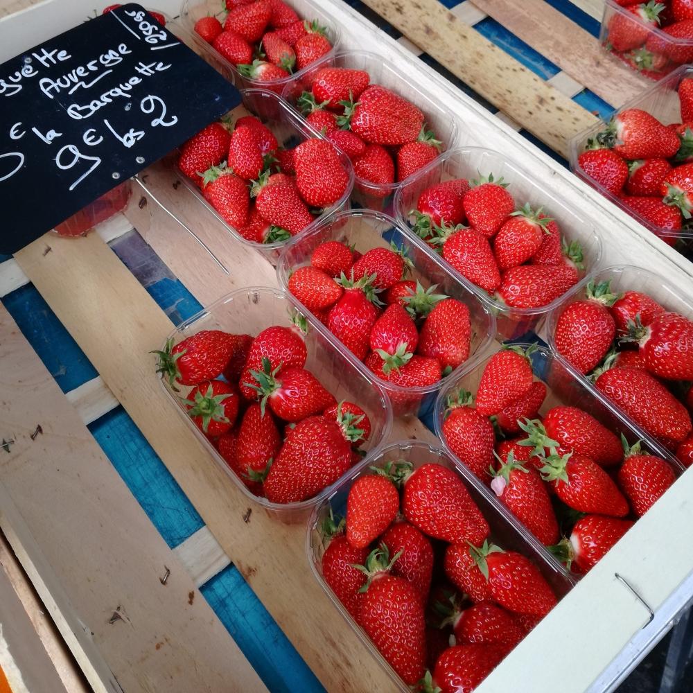fraises d'Auvergne